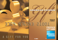 American Express Gift Card US$25
